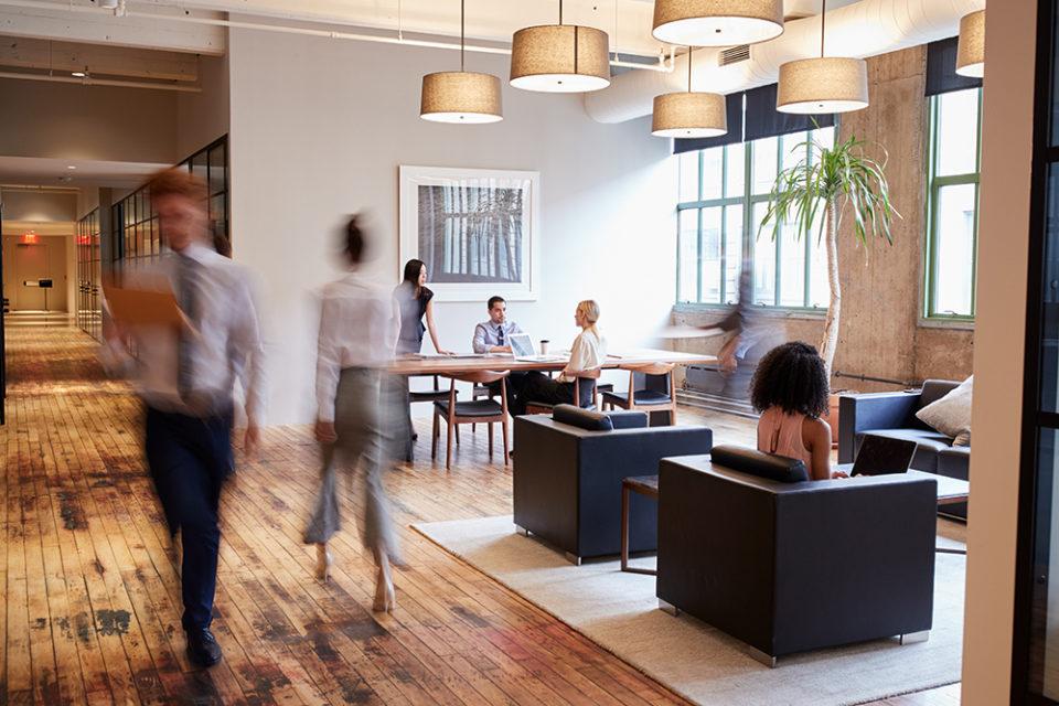bureau espace commerciale cowork investir ile maurice