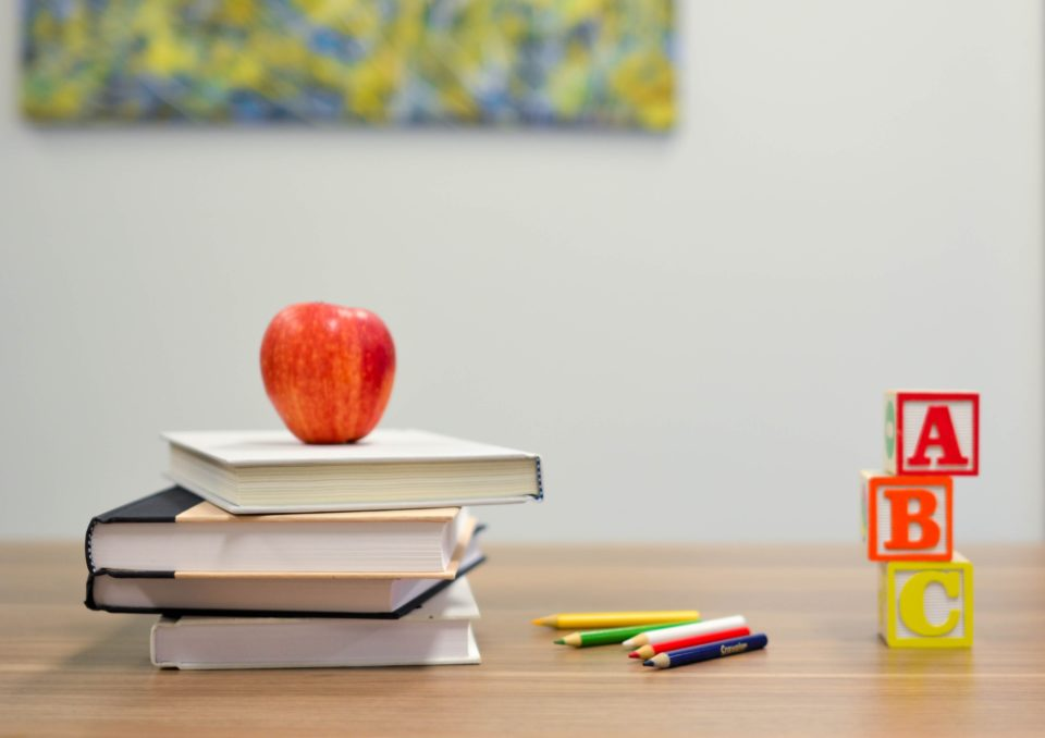 Education a l'Ile Maurice